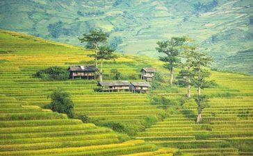 droomvakantie naar Bali